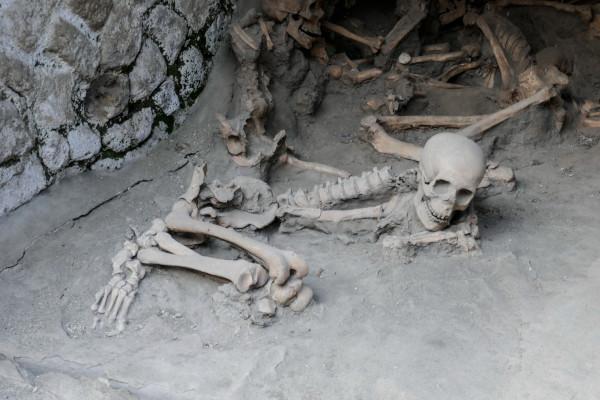 Referent - Archäologie und Geschichte